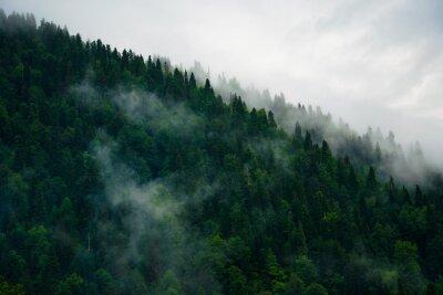 Fototapeta Mgła w górach
