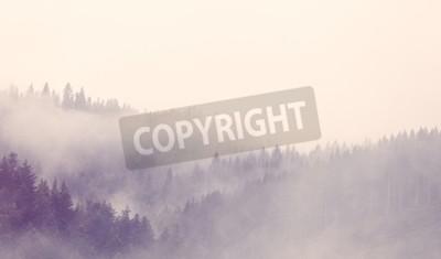 Fototapeta Mgła w lesie jesienią