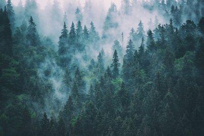 Fototapeta Mglisty krajobraz górski