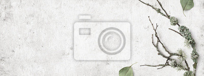 Fototapeta minimalist natural Scandinavian style winter banner with forest elements such as twigs, lichens, and dry leaves on a distressed white wooden background, flat lay / top view