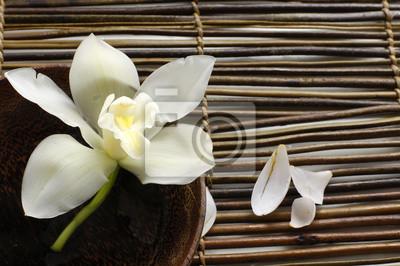 Miska orchidea, Płatek na bambusowe maty