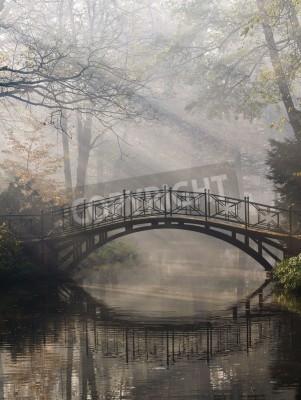 Fototapeta Mistic most w parku jesienią