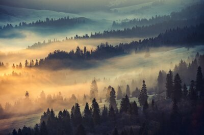 Fototapeta Misty lasów górskich krajobraz rano, Polska
