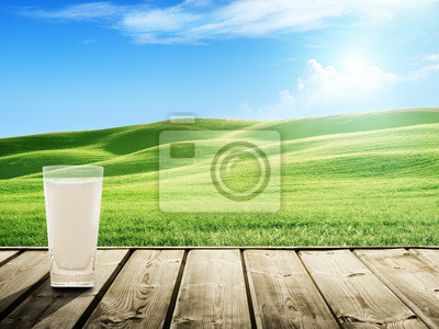 Fototapeta mleko i słoneczny Springfield