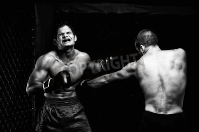Fototapeta MMA - mieszanych sztuk walki artystów walki - dziurkowania