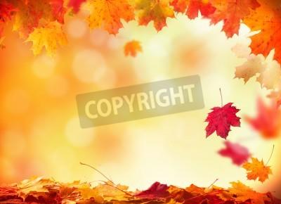 Fototapeta Moody tła jesienią z opadające na drewnianych desek