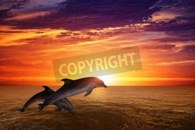 Fototapeta Mórz i oceanów w tle - skoki delfiny, piękny czerwony zachód słońca na morzu