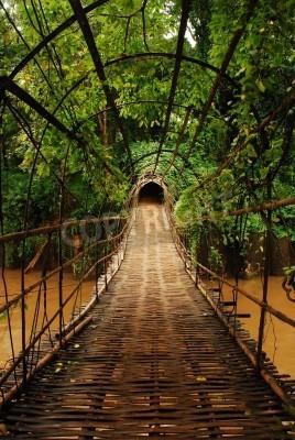 Fototapeta Most bambusa