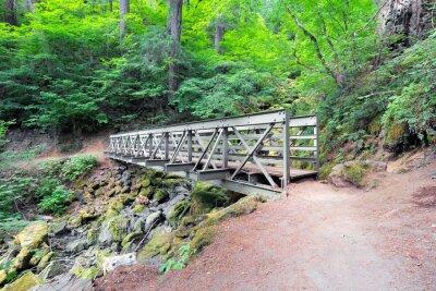 Fototapeta Most dla pieszych na szlak turystyczny w stanie Waszyngton