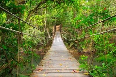 Fototapeta Most do dżungli, park narodowy Khao Yai, Tajlandia
