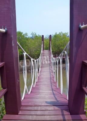 Fototapeta Most linowy krzyż nad kanałem w lasów namorzynowych