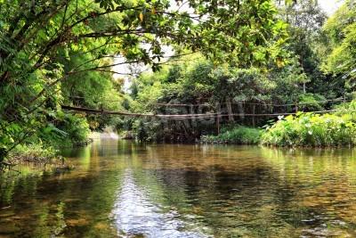 Fototapeta Most na rzece w dżungli, Tajlandia