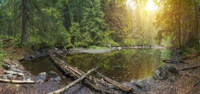 Fototapeta Mountain Lake w dzikiej tajdze w czasie ulewnego deszczu. Stare drewno na tle magii i baśni, według legendy, woda, woda i syreny żyć, ludzie nie mają.