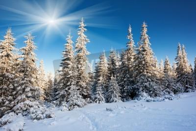Fototapeta Mroźny, słoneczny dzień w górach