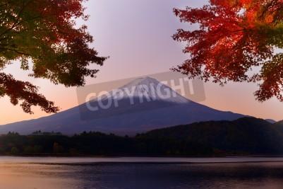 Fototapeta Mt. Fuji and autumn foliage at Lake Kawaguchi.