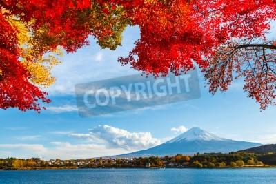 Fototapeta Mt. Fuji in autumn