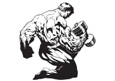 Fototapeta Muskularne ciało