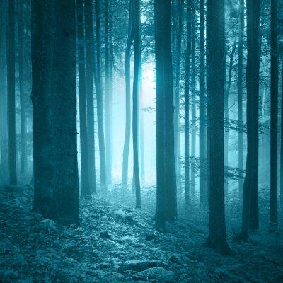 Fototapeta Mystic sezonowych niebieski mglisty las z kamieni na podłodze pokrytej mchem.