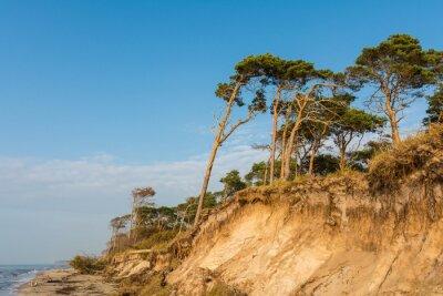 Fototapeta Na zachodniej plaży na Darss