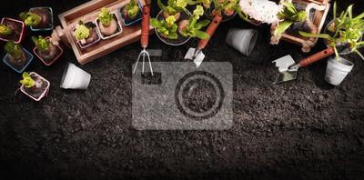 Fototapeta Narzędzia ogrodnicze i rośliny. Spring Garden Works Concept