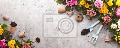 Fototapeta Narzędzia ogrodnicze na łupkowym tle. Spring Garden Works Concept