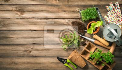 Fototapeta Narzędzia ogrodnicze, nasiona i gleby na drewnianym stole