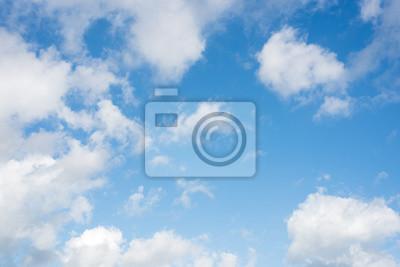 Fototapeta natura na tle nieba