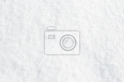 Fototapeta Natural snow texture background, closeup top view