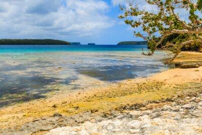 Fototapeta Neiafu, Tonga.