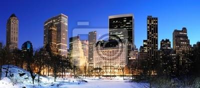 New York City Manhattan Central Park panoramy w zimie