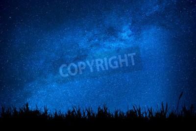 Fototapeta Niebieskie ciemne nocne niebo z wielu gwiazd nad polem trawy. Milkyway kosmos tło