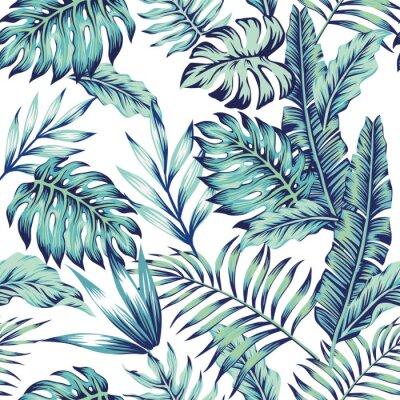 Fototapeta niebieskie dżungla białe tło