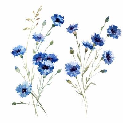 Fototapeta Niebieskie kwiaty 8