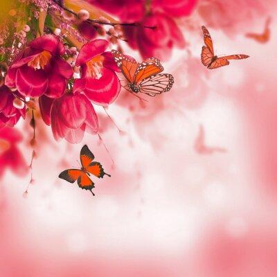 Fototapeta Niebieskie tulipany z mimozy i motyl