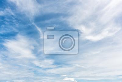 Niebieskim tle nieba