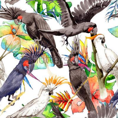 Fototapeta Niebo papa ara ptasi biały wzór stylem akwarela. Dziki, ptak z latającymi skrzydłami. Aquarelle ptak dla tła, tekstury, wzoru, ramy, granicy lub tatuażu.