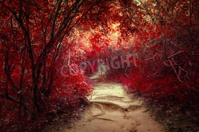 Fototapeta Nierealne kolory krajobraz fantasy w tropikalnej dżungli lasu z tunelu i sposób ścieżką pośród bujnej