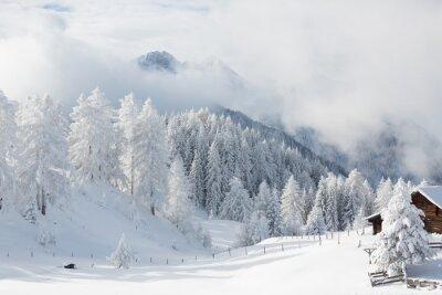 Fototapeta Niesamowite dekoracje zimowe, alpy austriackie