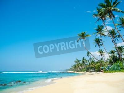 Fototapeta Nietknięte tropikalna plaża w Sri Lance