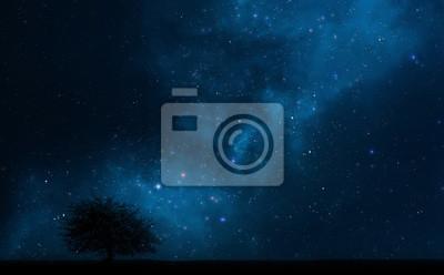 Fototapeta Nocne niebo z drzewa i mlecznej drodze