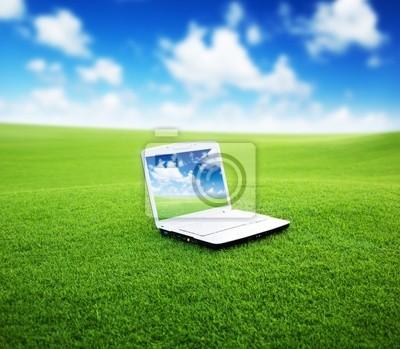 Fototapeta notebook na zielonym polu
