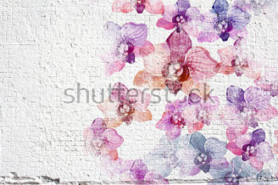Fototapeta Obejmuje biały grunge ściany stiuku tło. Ścienna sztukateria tekstury z kolorowymi farbami kwiatów storczykowych.
