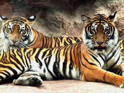 Fototapeta Obraz olejny Tiger / fot malowanie efekt Oil