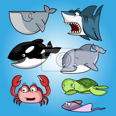 oceany ryby