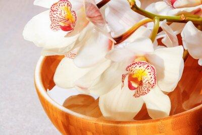 Fototapeta Oddział białych orchidei w misce