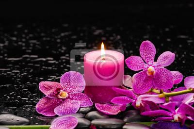 Oddział orchidei i świeca na czarnych kamieni z długiej łodydze