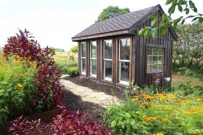 Fototapeta Old Wooden Garden Shed Near Horse Pasture in Lush Summer Cottage Garden