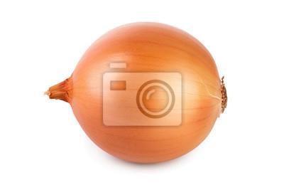 Fototapeta One yellow onion isolated on white background close up
