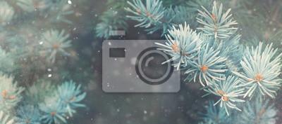 Fototapeta opady śniegu w zimowym lesie. Boże Narodzenie Nowy Rok magia. Niebieski świerk jodła gałęzi drzew szczegół. banner wizerunek