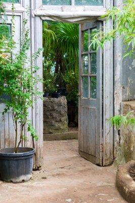 Fototapeta Opened vintage wooden door to  green garden